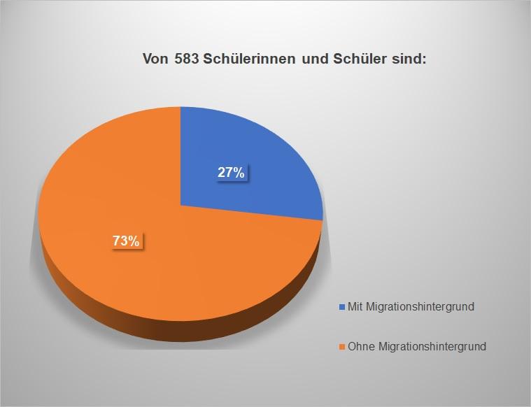 Statistikdiagramm - Migrationshintergrund