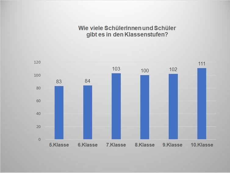 Statistikdiagramm - Wie viele Schüllerinnen und Schüler in den Klassenstufen